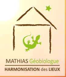 logo http://mathias-geobiologue.com